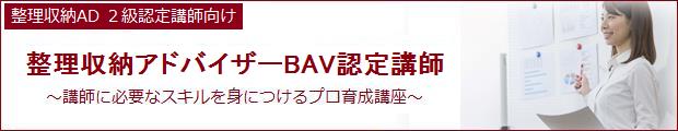 bav-instructor